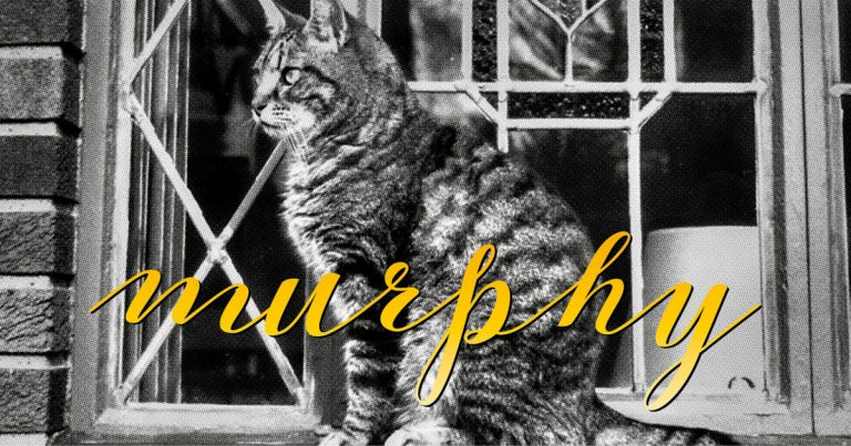 Murphy, a happy tune about an ambitious cat by Composer Jennifer Clark